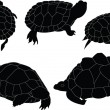 Royalty-Free Stock Vector Image: Turtles illustration collection