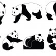 Stock Vector: Pandcollection