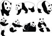 Panda collection — Stock Vector