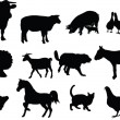 Farm animal collection — Imagens vectoriais em stock