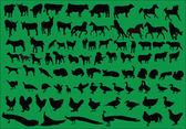 Colección de animales de granja — Vector de stock
