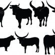 Cattle illustration collection — Stock Vector