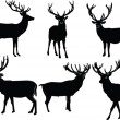 Royalty-Free Stock Vector Image: Deers collection