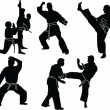 Karate silhouette collection — Stock Vector #2146833