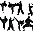 Karate silhouette collection - Stock Vector