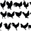 Chickens collection — Stok Vektör