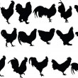 Stock Vector: Chickens collection