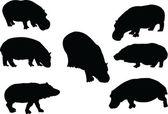 Hippopotamus collection — Stock Vector