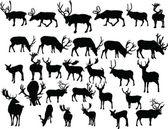 Deers collection — Stock Vector