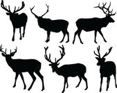 Deers collection — Stock Vector