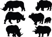 Rhinoceros collection — Stock Vector