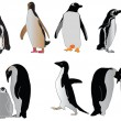 Penguin collection — Imagen vectorial
