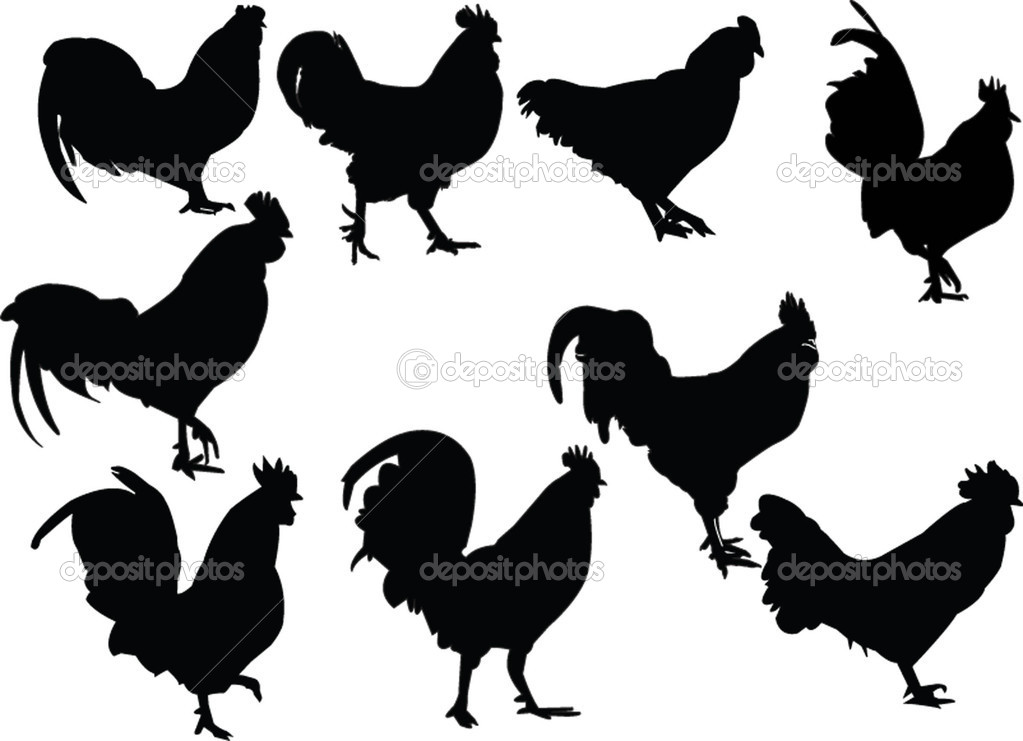 roosters collection - vector — Vettoriali Stock  #2170356