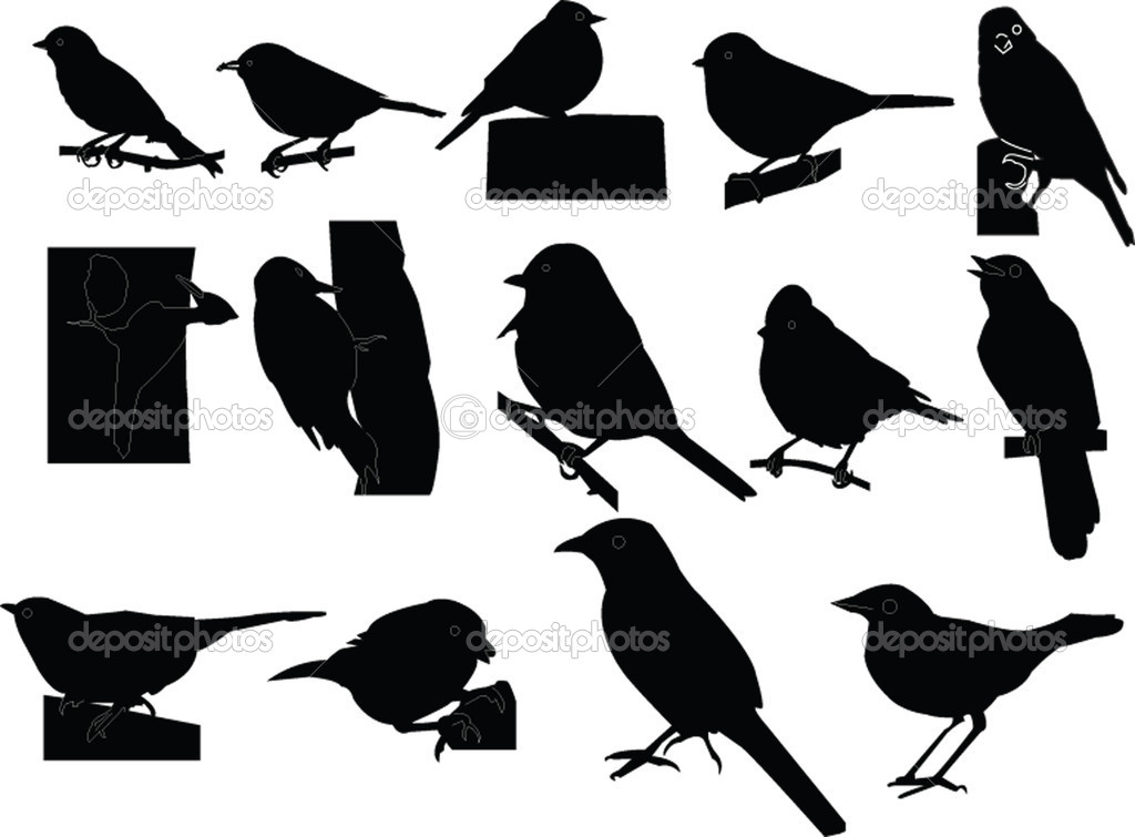  dicky birds collection - vector  Stock Vector #2171630