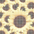 Halftone_sunflowers — Vettoriale Stock #2617681