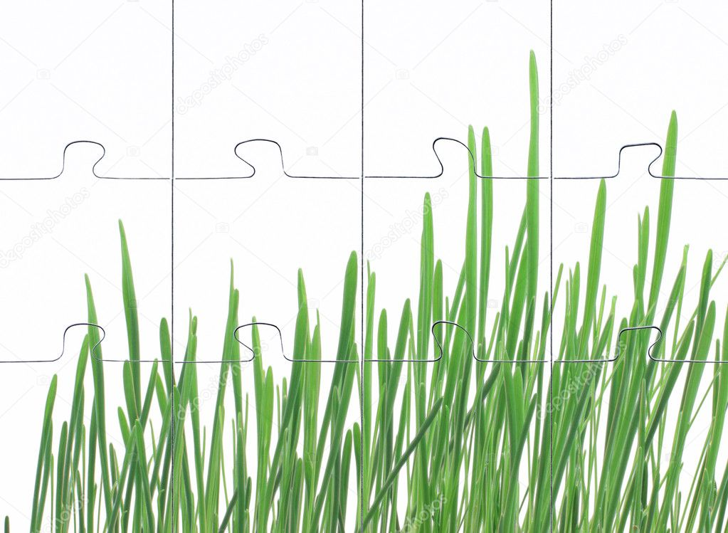 Photomontage assembled puzzle grass on white background — Stock Photo #2368100