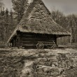 Old traditional Ukrainian house — Stock Photo #2099489