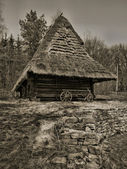 Old traditional Ukrainian house — Foto de Stock
