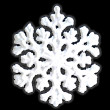 White snowflake isolated. — Stock Photo