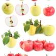 Apple set,isolated — Stock Photo #2333358