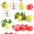 Stock Photo: Apple set,isolated