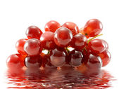 Grapes in water — Stock Photo