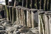 Plaża morze północne z falochronu — Zdjęcie stockowe