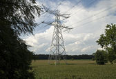 Electricity pylons — Foto Stock