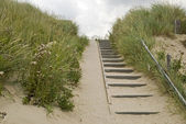 Stairs in the dunes — Stock Photo