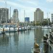 Yacht Basin 1 — Stock Photo
