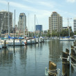 Yacht Basin 1 — Stock Photo #2266253