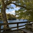 Suwannee River Boardwalk - Stock Photo