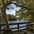 suwannee river boardwalk — Stock Photo