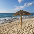 Stock Photo: Beach Palapa