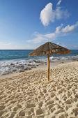 Beach Palapa — Stock Photo