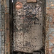 Stock Photo: Decayed Door