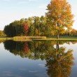 Autumn Lake — Stock Photo #2111034