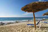 Palapa and Beach Chair — Stock Photo