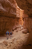 Hikers in Bryce Canyon — Stock Photo