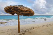 Single Beach Palapa — Stock Photo
