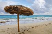Single Beach Palapa — Stock Photo