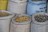 South American Grains — Stock Photo