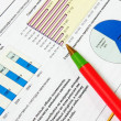 Red ball-point pen on business chart — Stock Photo