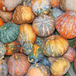 Group of pumpkin — Stock Photo #2122315