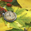 Old watch over colored autumn leafs - Stock Photo