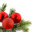 Christmas fir-tree with balls - Stock Photo
