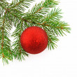 Christmas tree- fir with ball - Stock Photo