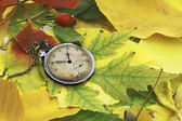 Old watch over colored autumn leafs — Stock Photo