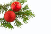 Christmas branch fir tree with red ball — Stock fotografie