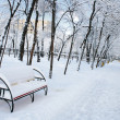Stock Photo: Park landscape in winter